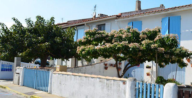 Hausreihe-Saintes-Maries-de-la-mer-camargue