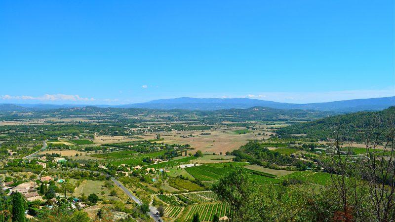 Landschaft des Luberon Weinfelder Oliven