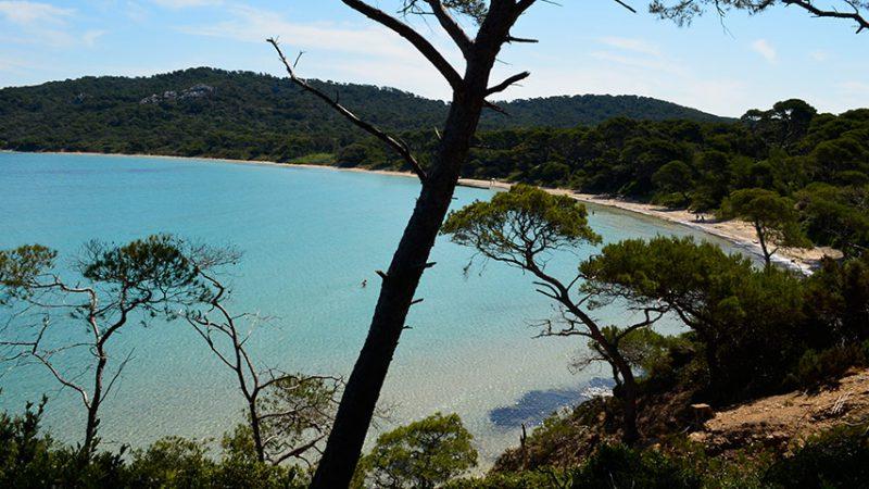 plage-notre-dame-ile-porquerolles-provence-alpes-maritimes