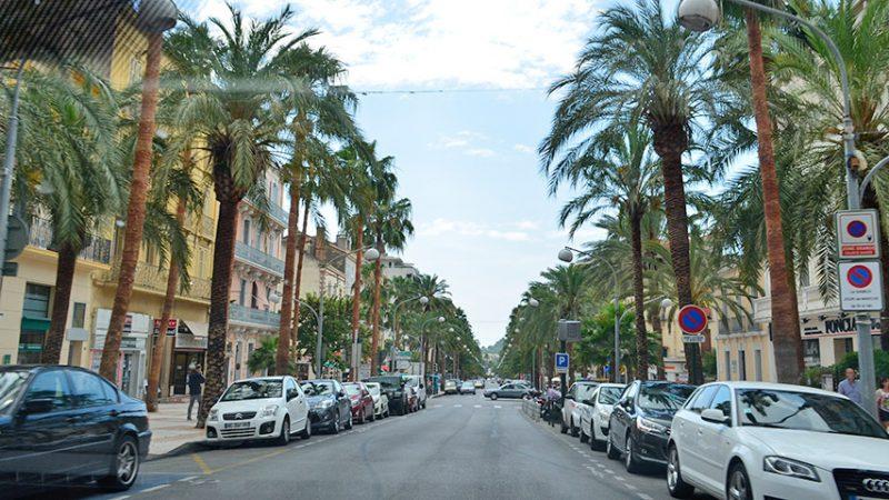 Hyeres-les-Palmiers-palmen-boulevard-giens