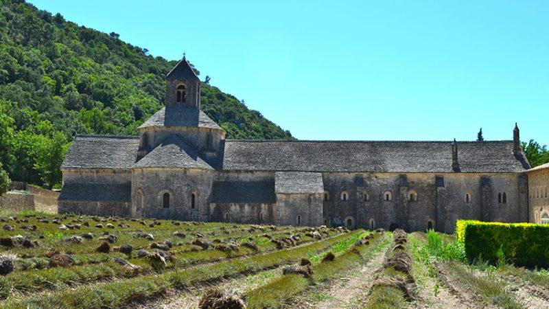 Notre-Dame-de-Senanque-gordes-provence