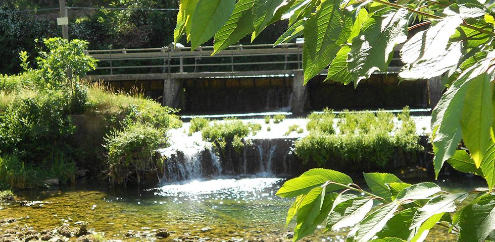 Der Fluss Sorgue bei Fontaine-de-Vaucluse