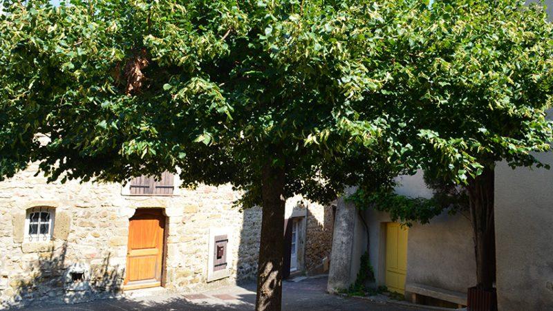 lourmarin-kleiner-platz-provence