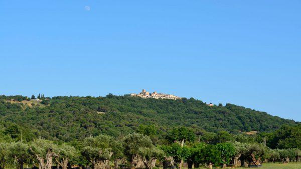 Gassin Saint-Tropez